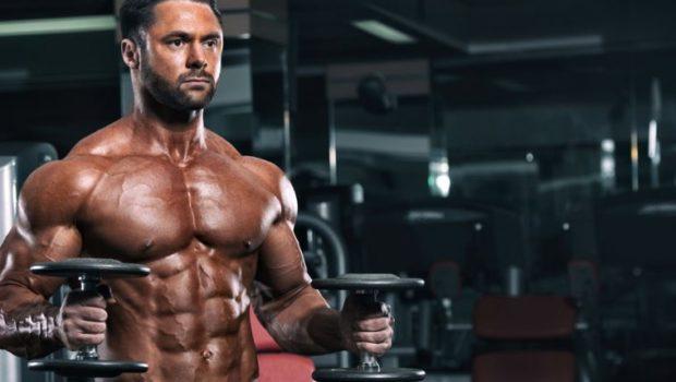 La pré-fatigue pour mieux cibler un muscle - Stéroïde